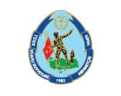 logo_mehmetcik